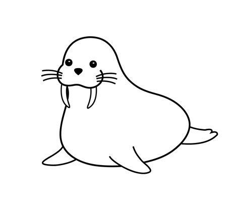 funny walrus cartoon animals coloring pages  kids