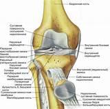 Обезболивающее от боли в коленных суставах