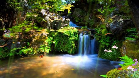 Hd Free Wallpaper by Just Paradise Animated Wallpaper Http Www