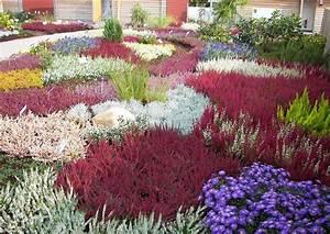 Gartengestaltung Beispiele Und Bilder : blumen und pflanzen calluna heidepflanzung beispiele der gartengestaltung landschaftsbau ~ Orissabook.com Haus und Dekorationen