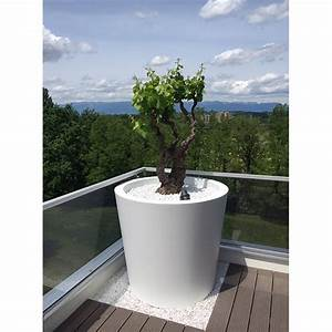 Tres Grand Pot De Fleur Exterieur : tr s grand pot de fleurs conique large hauteur 100 cm ~ Dailycaller-alerts.com Idées de Décoration