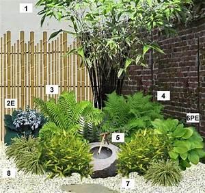 Plantes Pour Jardin Japonais Exterieur : les 25 meilleures id es concernant le tableau petit jardin ~ Premium-room.com Idées de Décoration