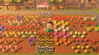 create hybrid flowers  animal crossing