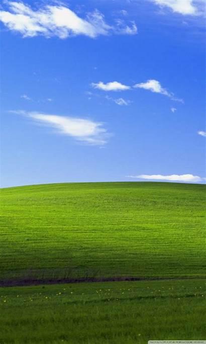 Xp Windows Background 4k Wallpapers Desktop Grass