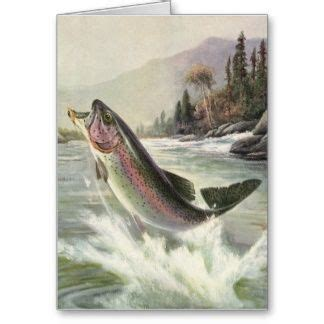 images  fly fishing greeting cards  pinterest