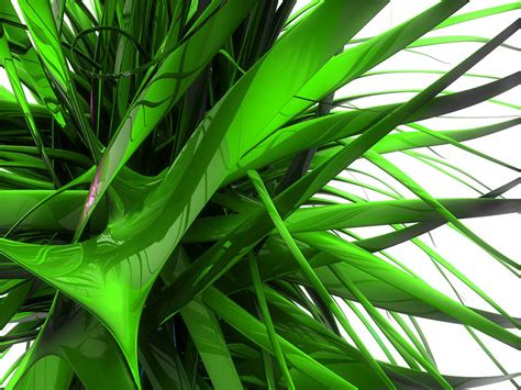 Green Abstract Wallpaper wallpapers green abstract wallpapers