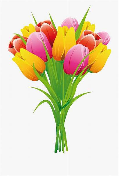 Tulip Flower Flowers Tulips Clipart Easter Butterfly