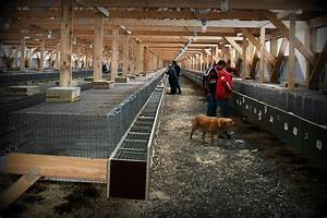 Care And Handling Guidelines For Fur Farm Animals