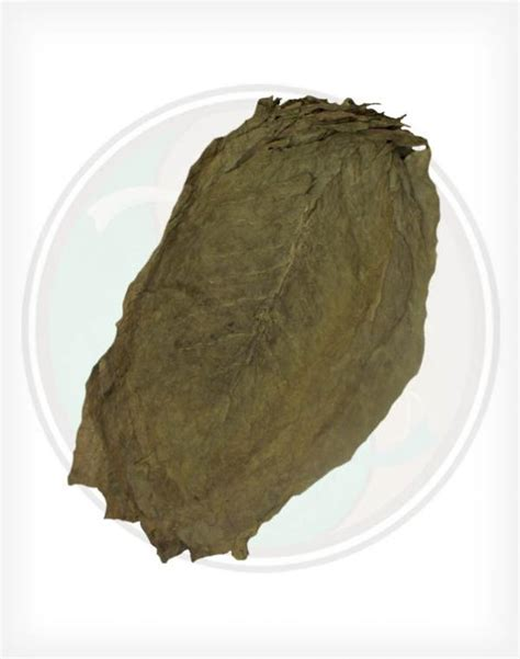 indonesian sumatra long filler indonesian tobacco leaf