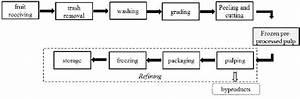 General Flow Process Diagram For Fruit Pulp Processing
