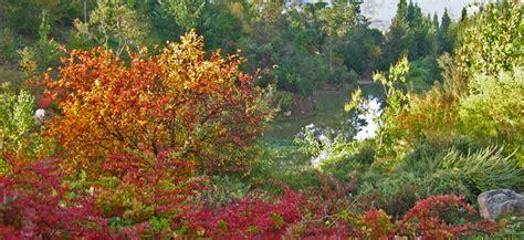 quarryhill botanical garden sonoma county nurseries resource guide 187 quarryhill