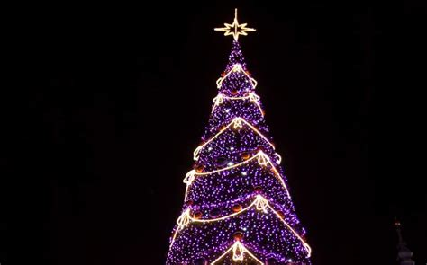 australian christmas tree sets record with 518 838 lights