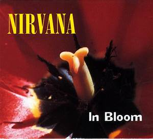 Nirvana - In Bloom (CD) at Discogs