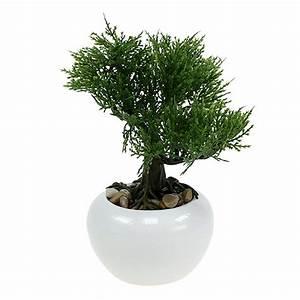 Baum Im Topf : bonsai baum im topf 20cm preiswert online kaufen ~ A.2002-acura-tl-radio.info Haus und Dekorationen