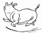 Pig Coloring Dancing Bellied Pot Supercoloring Template Coloringpages101 sketch template