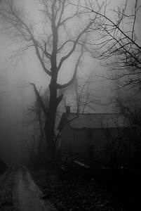 Spooky, scary rural area on a dark foggy night...hope the ...