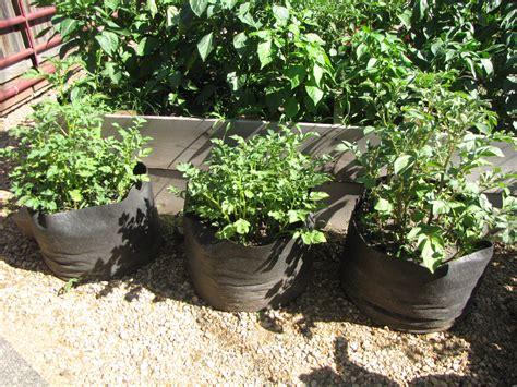 space saving gardening ideas diary of a small town earth