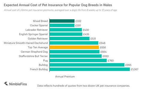 The best pet insurance uk: How Much Does it Cost to Insure the Top Ten Most Popular Dog Breeds in Wales? | NimbleFins
