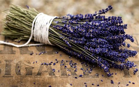 Top HDQ Free Lavender Images, Wallpapers - Cool FNZ88 ...