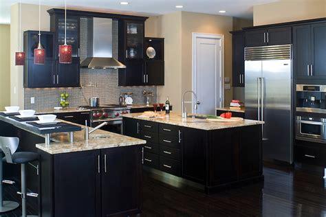 kitchen ideas black cabinets 22 kitchen ideas inspirationseek com