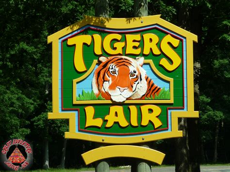 Safari Signs At Six Flags Great Adventure. Online Fundraising Platforms. Arizona Workers Compensation. Ma Personal Injury Lawyer Mercedes Gl450 2007. Best Movie Stream Sites Lsu School Of Nursing. How To Send Money To Australia. Instant Car Insurance Quote Adt Alarm Deals. Monadnock Water Delivery Culinary School Costs. Credit Card Processing Providers