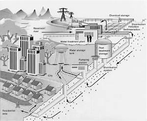 Representative Municipal Water Distribution System