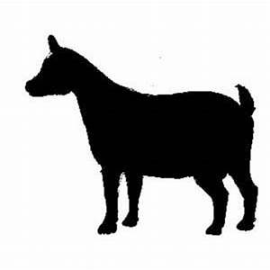 boer goat clipart