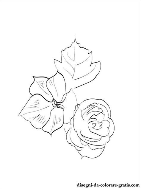 begonia disegni da colorare disegni da colorare gratis