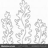 Seaweed Coloring Pages Weed Algae Sea Clipart Drawing Template Ocean Illustration Printable Crafts Printables Awesome Birijus Bannykh Alex Royalty Plants sketch template