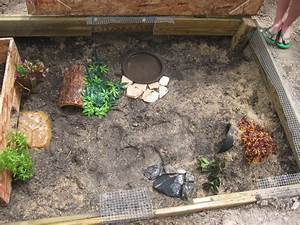 Russian Box Turtle Habitat Pictures to Pin on Pinterest ...