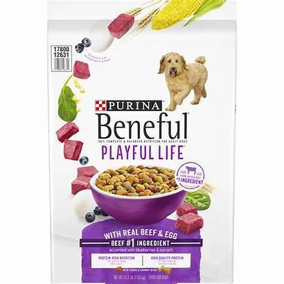 Beneful Dog Purina Playful Walmart Bag Beef