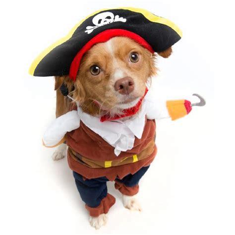 pirate costume by pet krewe tanga