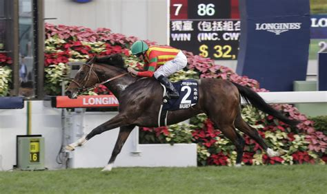 hong kong horse racing news sha tin  trading news