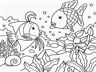 Coloring Sea Under Mewarnai Laut Binatang Gambar