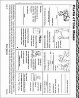 Mass Catholic Printable Worksheet Religion Holy Ccd Sunday Activities Religious Coloring Communion Education Worksheets Teaching Church Activity Grade Sketch Crafts sketch template