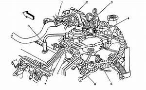 1991 Chevy S10 Vacuum Line Diagram Wiring Diagram Full Hd