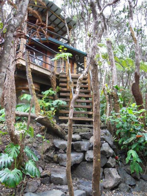 unforgettable treehouses  hawaii