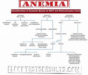 Ferritin Level Chart All Types Of Anemia With Full Anemia Definition Chart And
