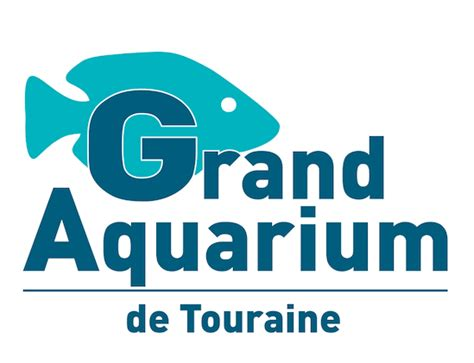tarif aquarium de touraine aquarium de touraine tarif 28 images le silurium photo de grand aquarium de touraine