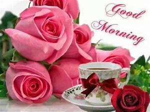 Good Morning Pink Rose Graphic