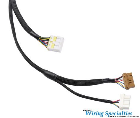 Ls1 Wiring Harnes by Wiring Specialties Ls1 300zx Harness Irace Auto Sports