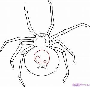 Drawn arachnid easy - Pencil and in color drawn arachnid easy