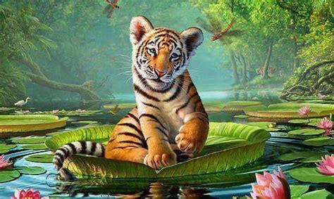 Animal Planet Hd Wallpapers - animal wallpapers animal planet desktop images free