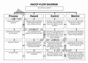 4 Best Images Of Haccp Flow Chart Template Printable