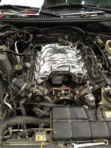Professional Products Mustang Typhoon Intake Polished  99