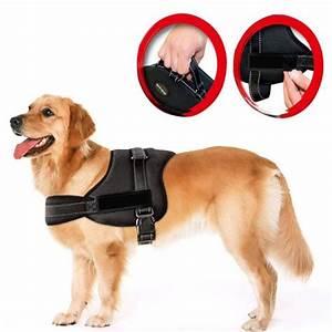 Harnais Gros Chien : harnais pour chien laisse ceinture taille de poitrine ajustable et r glable pour petit et ~ Nature-et-papiers.com Idées de Décoration