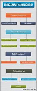 28 Best Jobs Hierarchy Images