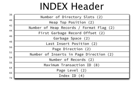 The Physical Structure Of Innodb Index Pages