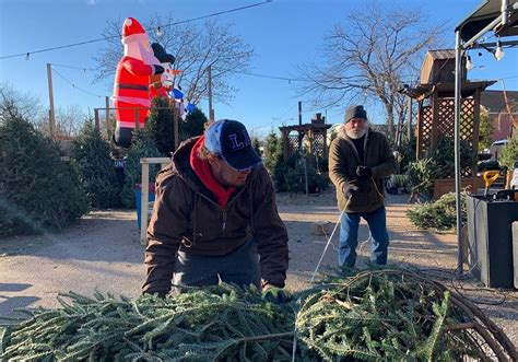 Is There A Christmas Tree Shortage In Missouri Or Illinois