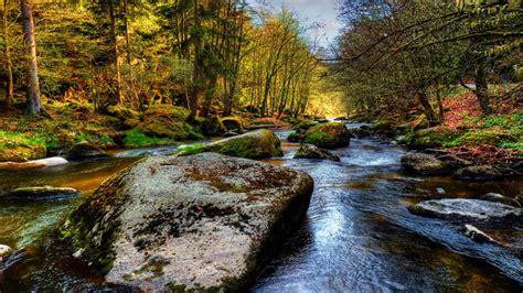 Forest River Massive Stone Background 9327